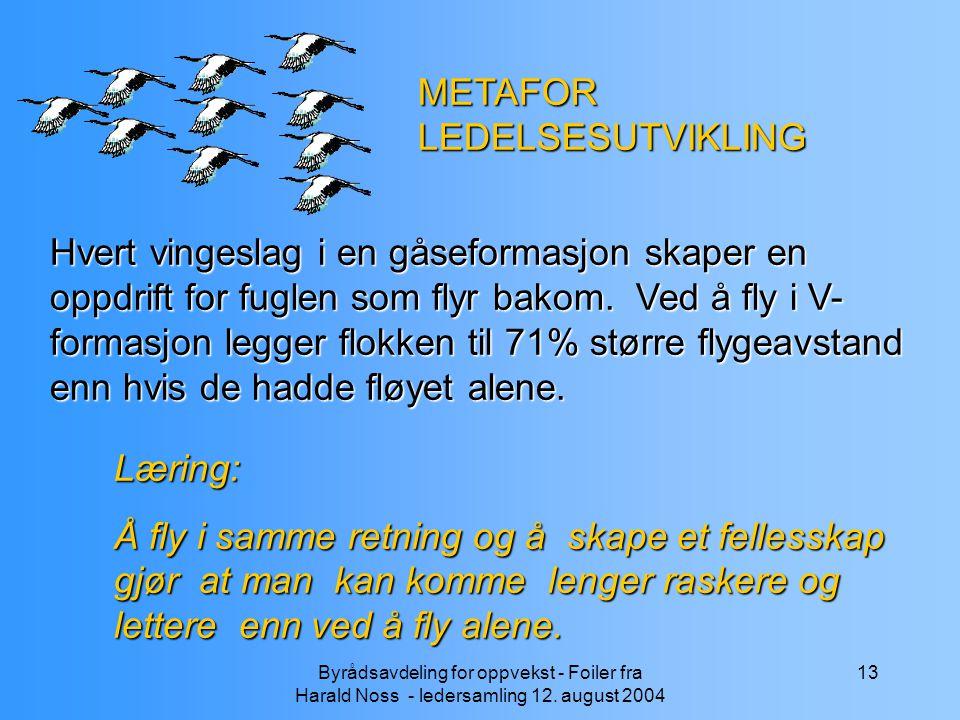 Byrådsavdeling for oppvekst - Foiler fra Harald Noss - ledersamling 12. august 2004 13 METAFOR LEDELSESUTVIKLING Hvert vingeslag i en gåseformasjon sk