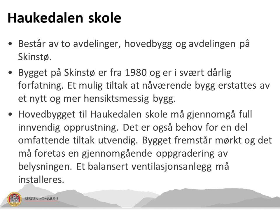 Haukedalen skole Består av to avdelinger, hovedbygg og avdelingen på Skinstø. Bygget på Skinstø er fra 1980 og er i svært dårlig forfatning. Et mulig