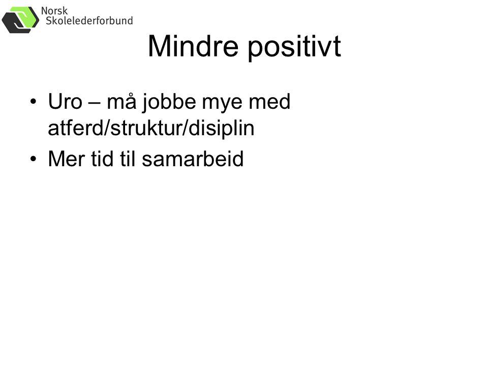 Mindre positivt Uro – må jobbe mye med atferd/struktur/disiplin Mer tid til samarbeid