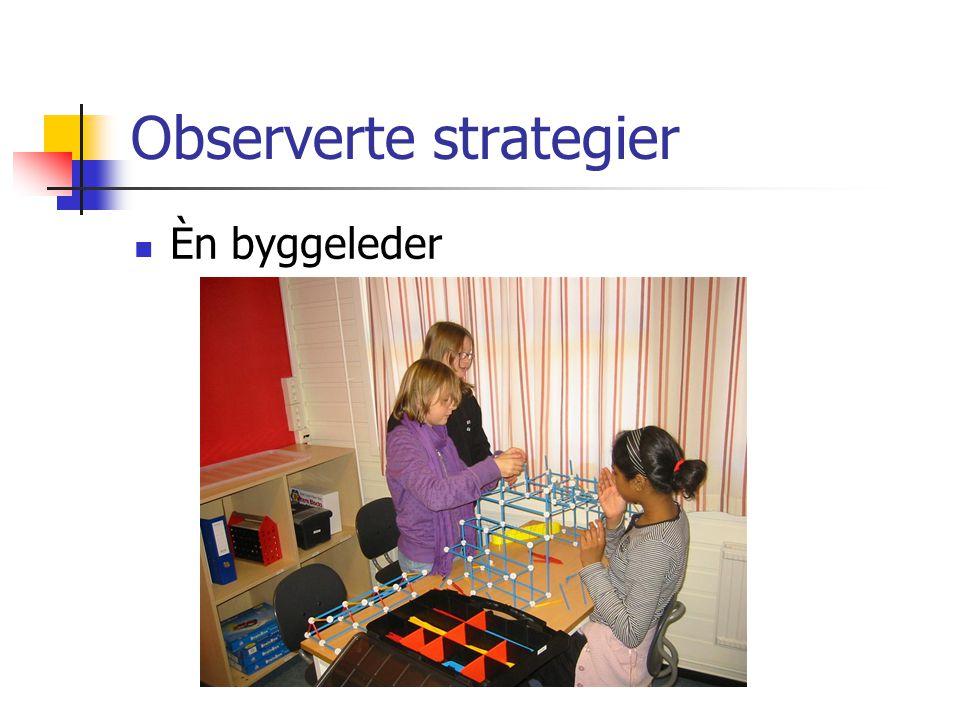 Observerte strategier Èn byggeleder