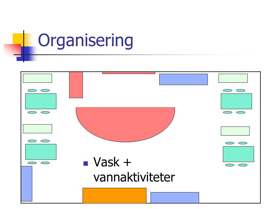 Organisering Vask + vannaktiviteter