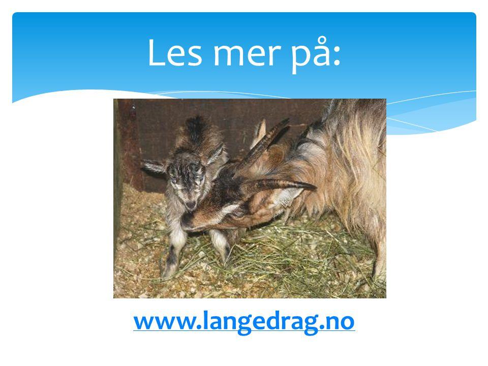 Les mer på: Les mer på www.langedrag.no www.langedrag.no