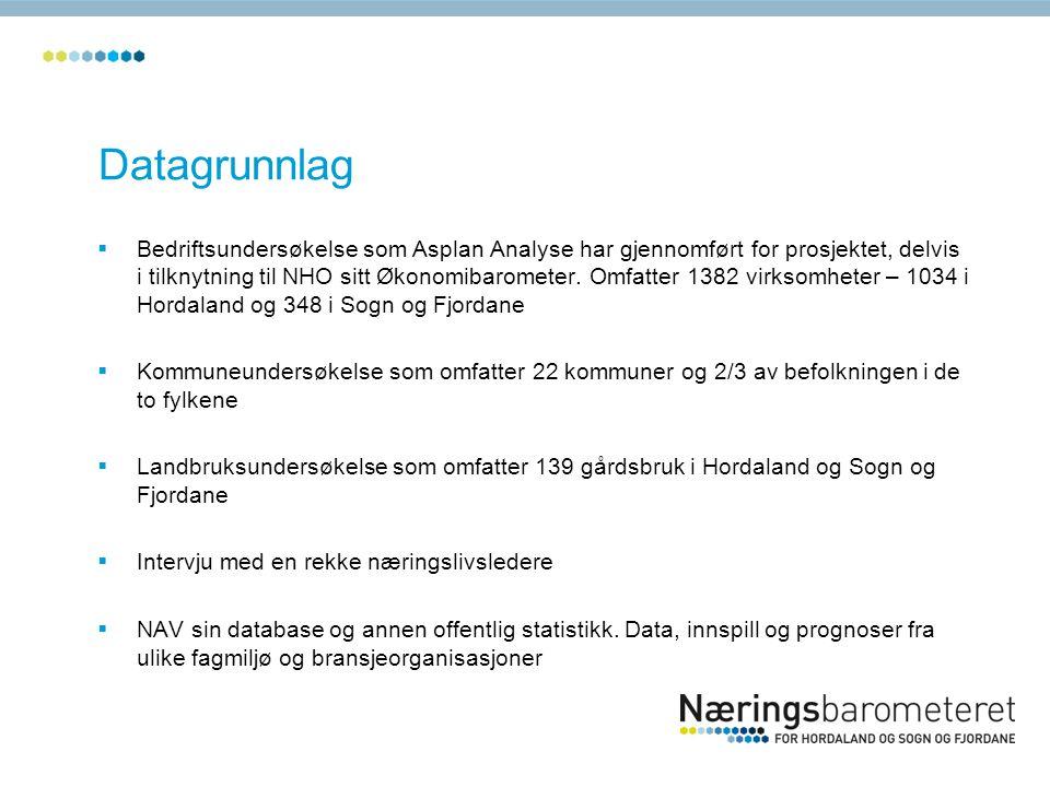 Datagrunnlag  Bedriftsundersøkelse som Asplan Analyse har gjennomført for prosjektet, delvis i tilknytning til NHO sitt Økonomibarometer. Omfatter 13