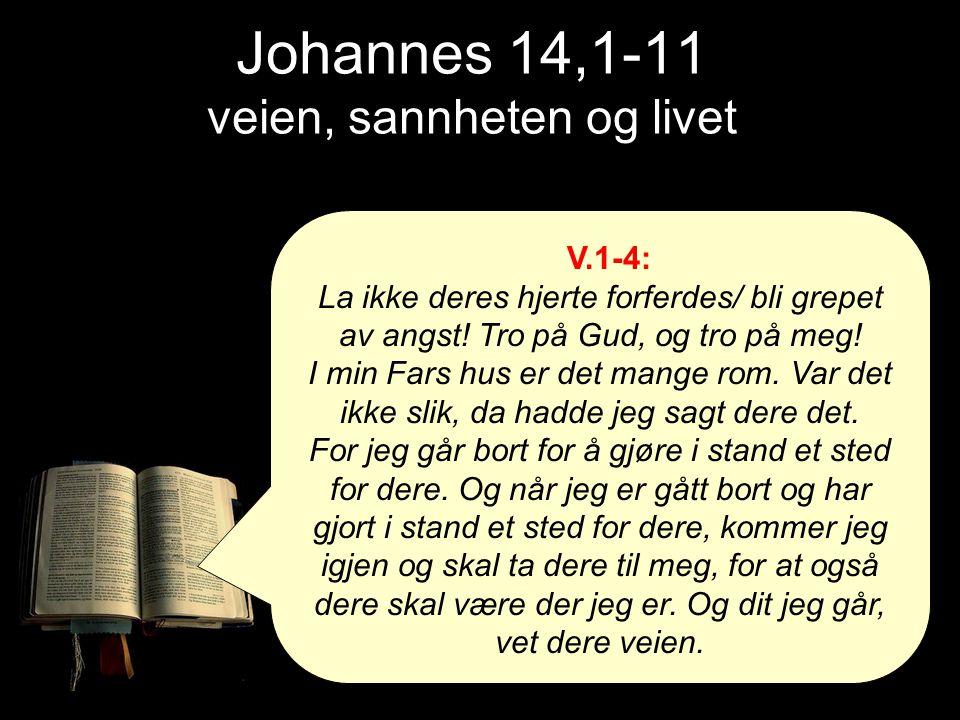 V.1-4: La ikke deres hjerte forferdes/ bli grepet av angst! Tro på Gud, og tro på meg! I min Fars hus er det mange rom. Var det ikke slik, da hadde je