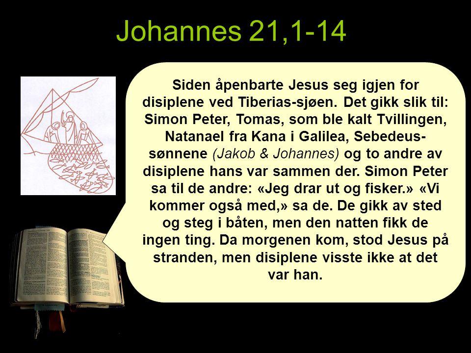 Siden åpenbarte Jesus seg igjen for disiplene ved Tiberias-sjøen.