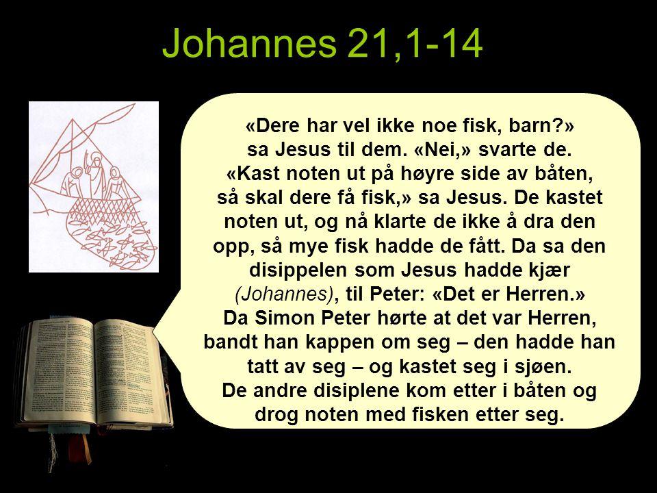Johannes 21,1-14 «Dere har vel ikke noe fisk, barn?» sa Jesus til dem.