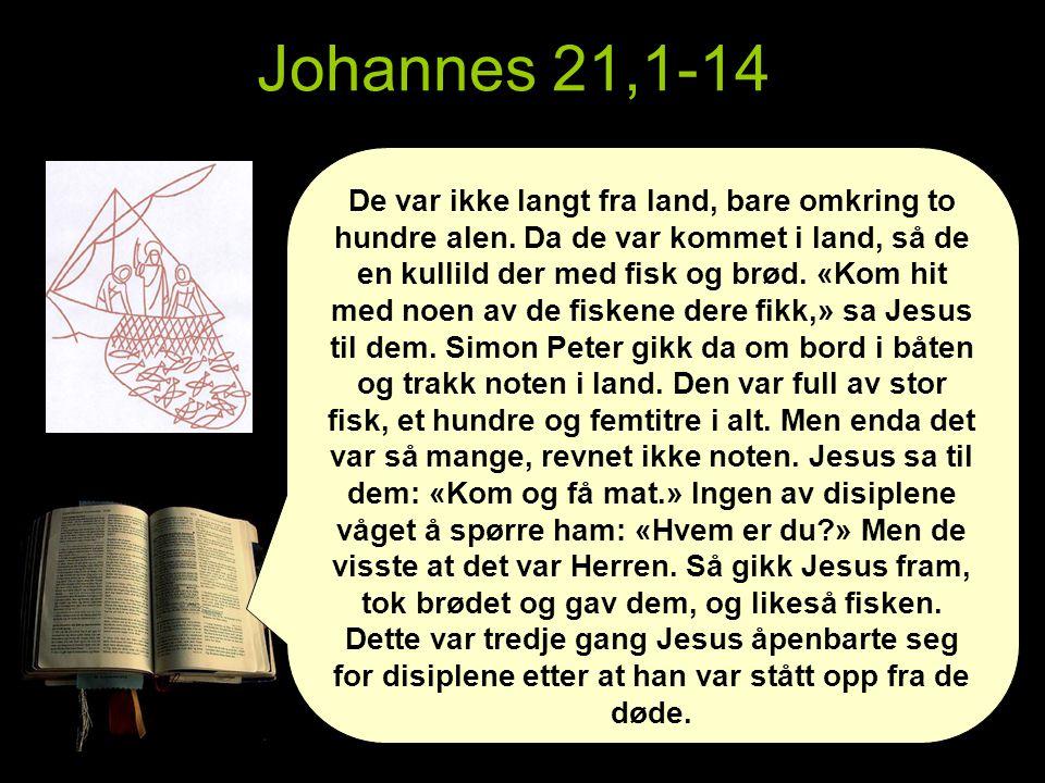 Johannes 21,1-14 De var ikke langt fra land, bare omkring to hundre alen.