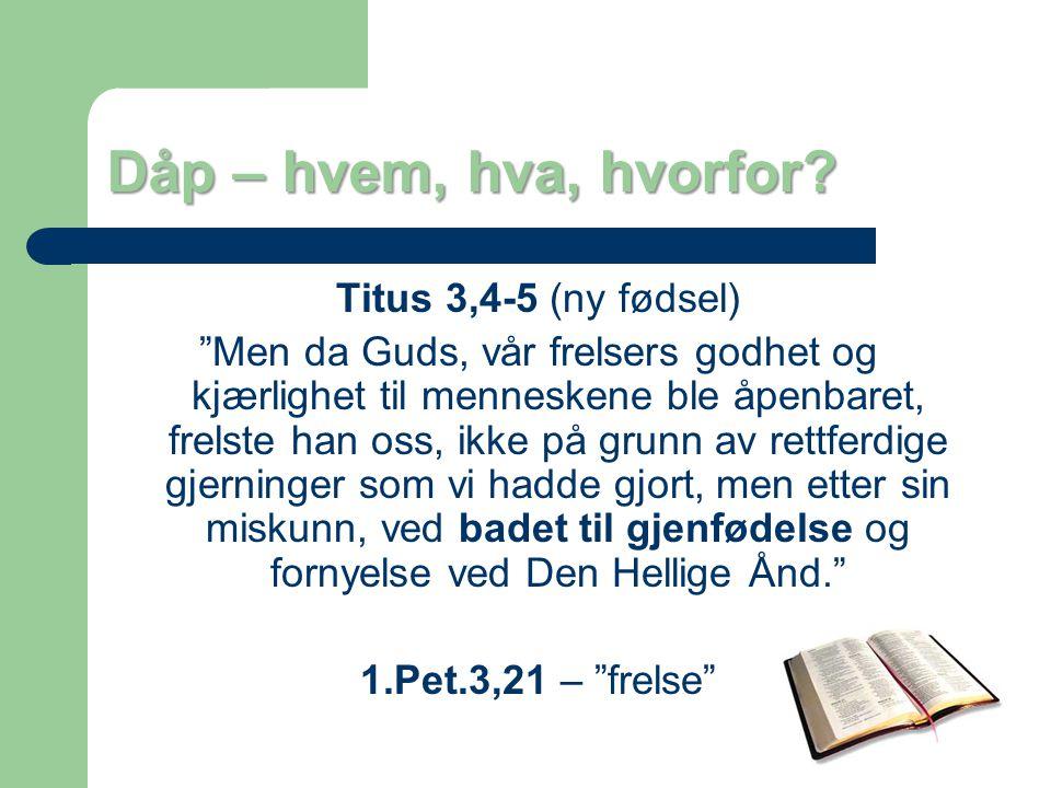 Dåp – hvem, hva, hvorfor? I dåpen er det Gud som handler.