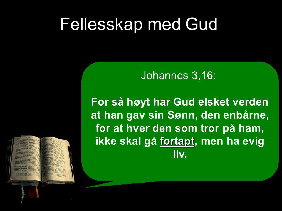 Fellesskap med Gud Johannes 3,16: fortapt For så høyt har Gud elsket verden at han gav sin Sønn, den enbårne, for at hver den som tror på ham, ikke sk