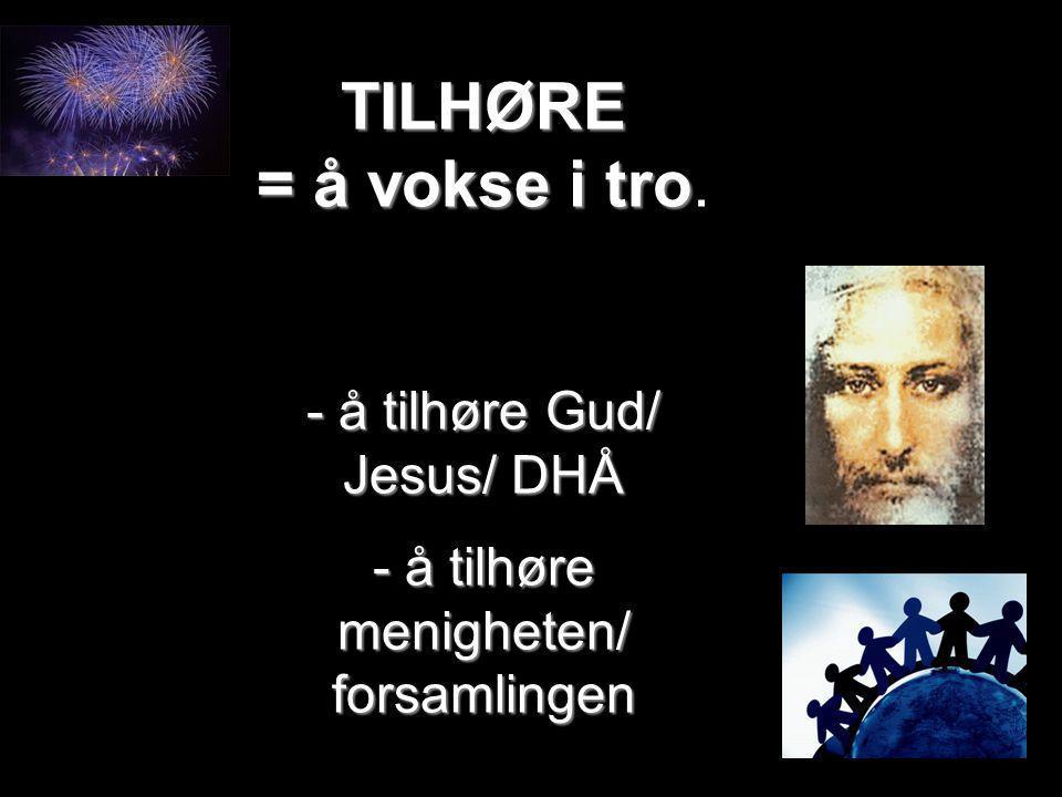 TILHØRE = å vokse i tro - å tilhøre Gud/ Jesus/ DHÅ - å tilhøre menigheten/ forsamlingen TILHØRE = å vokse i tro. - å tilhøre Gud/ Jesus/ DHÅ - å tilh