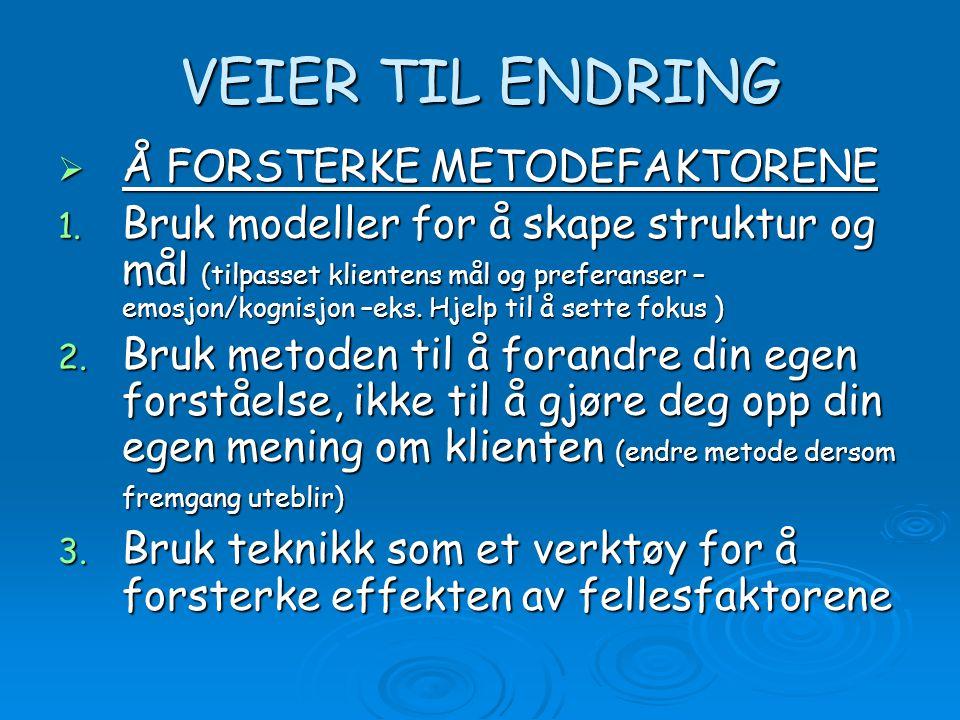 VEIER TIL ENDRING  Å FORSTERKE METODEFAKTORENE 1. Bruk modeller for å skape struktur og mål (tilpasset klientens mål og preferanser – emosjon/kognisj