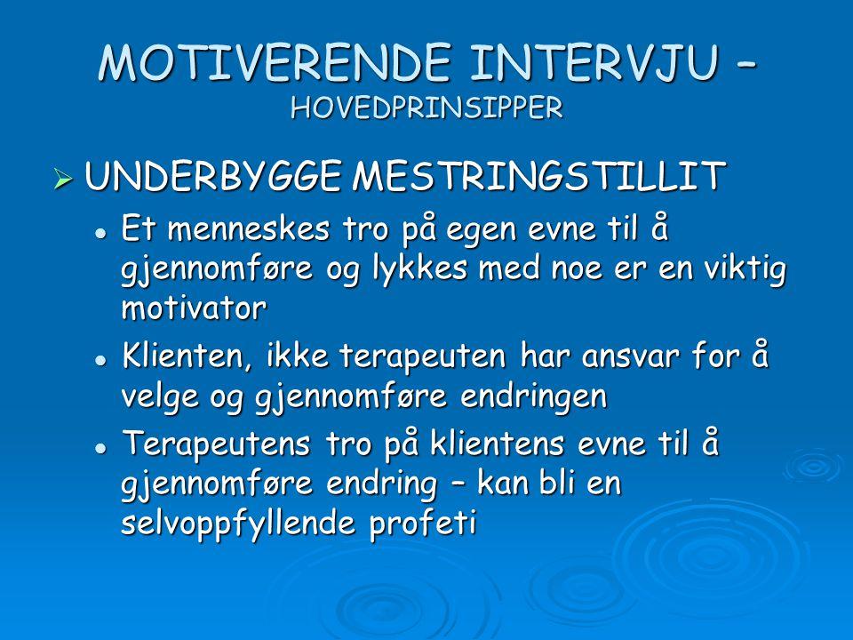 MOTIVERENDE INTERVJU – HOVEDPRINSIPPER  UNDERBYGGE MESTRINGSTILLIT Et menneskes tro på egen evne til å gjennomføre og lykkes med noe er en viktig mot