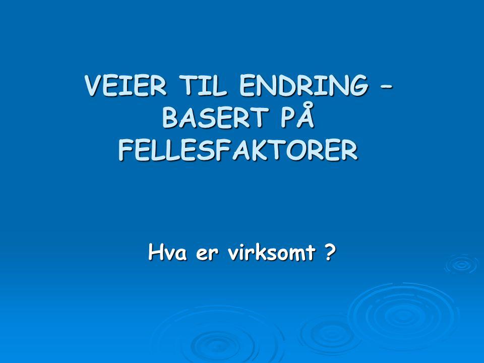 VEIER TIL ENDRING  Å FORSTERKE ALLIANSEFAKTORENE 1.