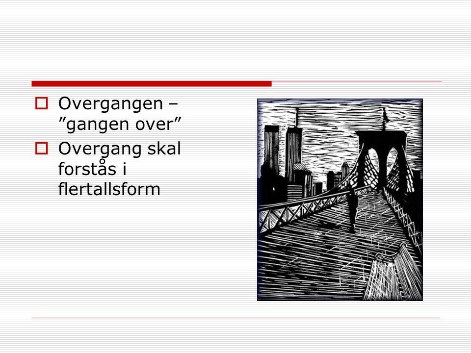 Betraktinger om overgang  van Gennep (1909) :…sveve mellom to verdener…  Lundstøl (1970) : …overgangen er for den den- gående, ikke for den-stående…  Lister (1998) : Overgangen til medborgerskapet  Jones (1995) : Det private prosjektet som samfunnsbidrag  Wyn & White (1997) : Fra å bli voksen til å bli akkurat det du vil  Buchman (1989) : Konstruere personlige biografier  Frønes (2001) : Skam knyttet til å ikke kunne fortelle den rette historien om seg selv
