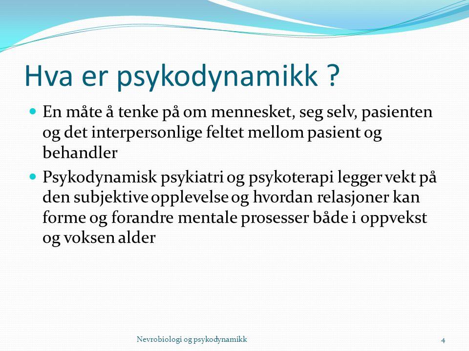Hva er psykodynamikk ? En måte å tenke på om mennesket, seg selv, pasienten og det interpersonlige feltet mellom pasient og behandler Psykodynamisk ps