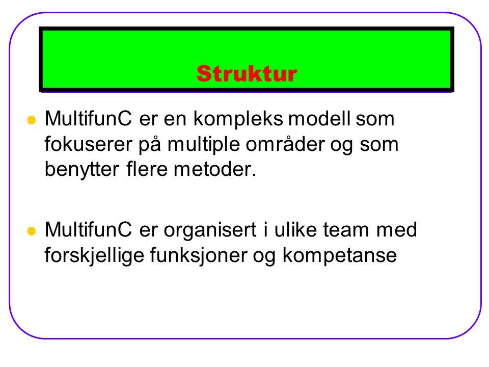 Struktur MultifunC er en kompleks modell som fokuserer på multiple områder og som benytter flere metoder.