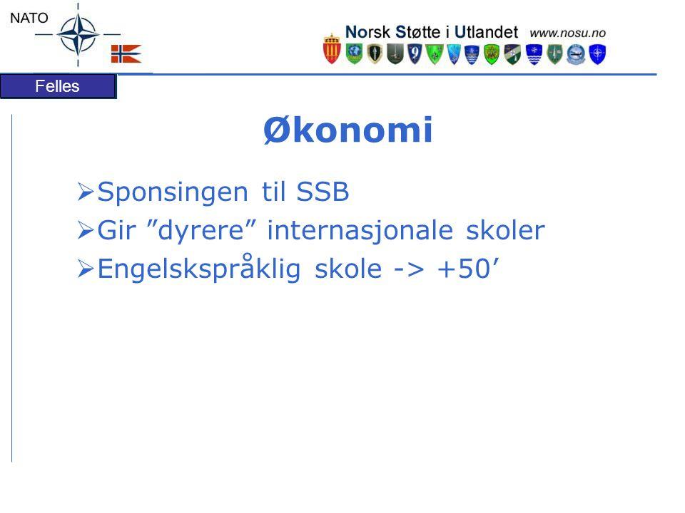 Felles Økonomi  Sponsingen til SSB  Gir dyrere internasjonale skoler  Engelskspråklig skole -> +50'