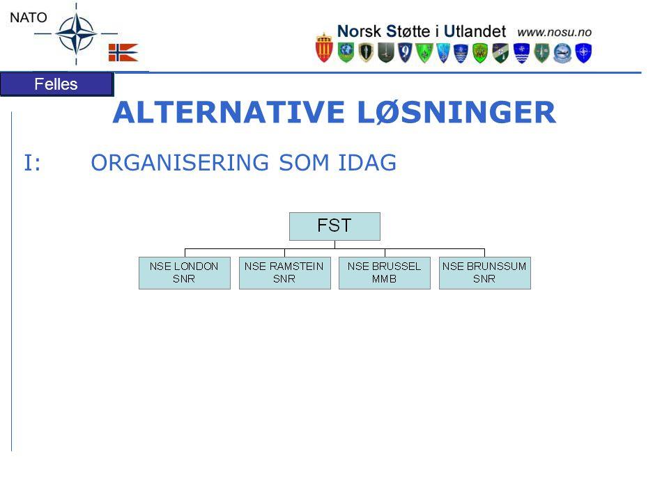 Felles ALTERNATIVE LØSNINGER I:ORGANISERING SOM IDAG OPP GAV EPO RTE FØL GEN AKTIVIT ET STØTTEELEMENTSTØTTEELEMENT FSTFST F&SF&S AK/RSF/OAK/RSF/O FLAF