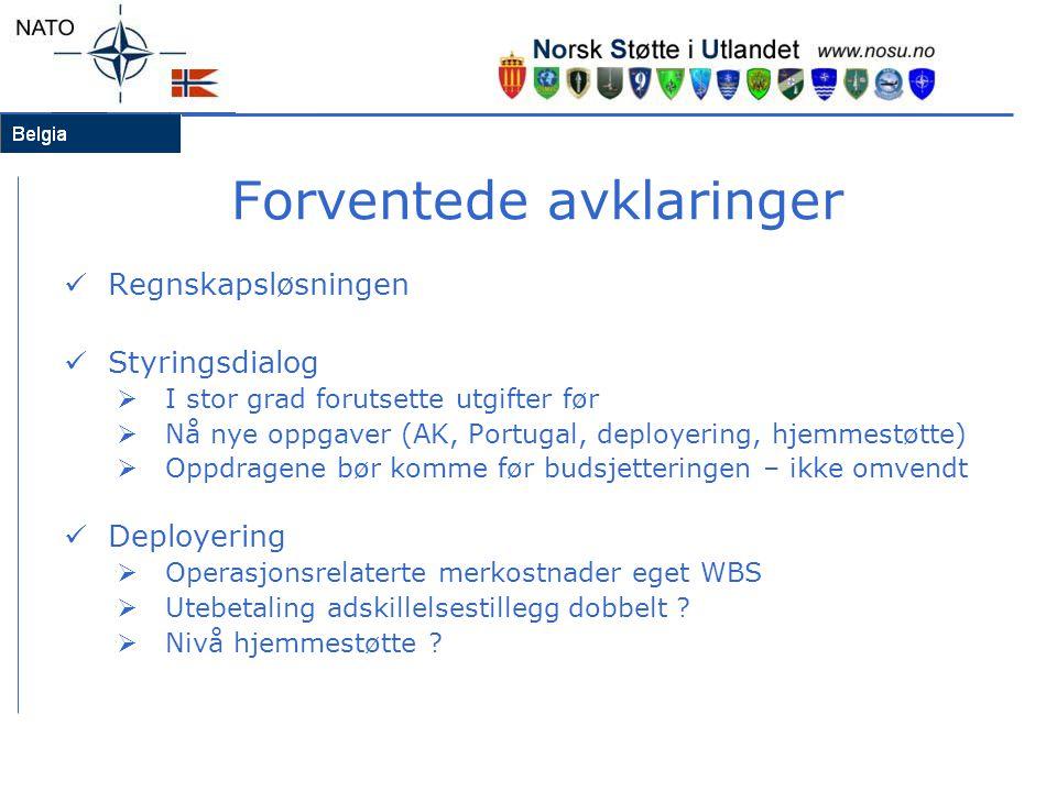 Forventede avklaringer Regnskapsløsningen Styringsdialog  I stor grad forutsette utgifter før  Nå nye oppgaver (AK, Portugal, deployering, hjemmestø