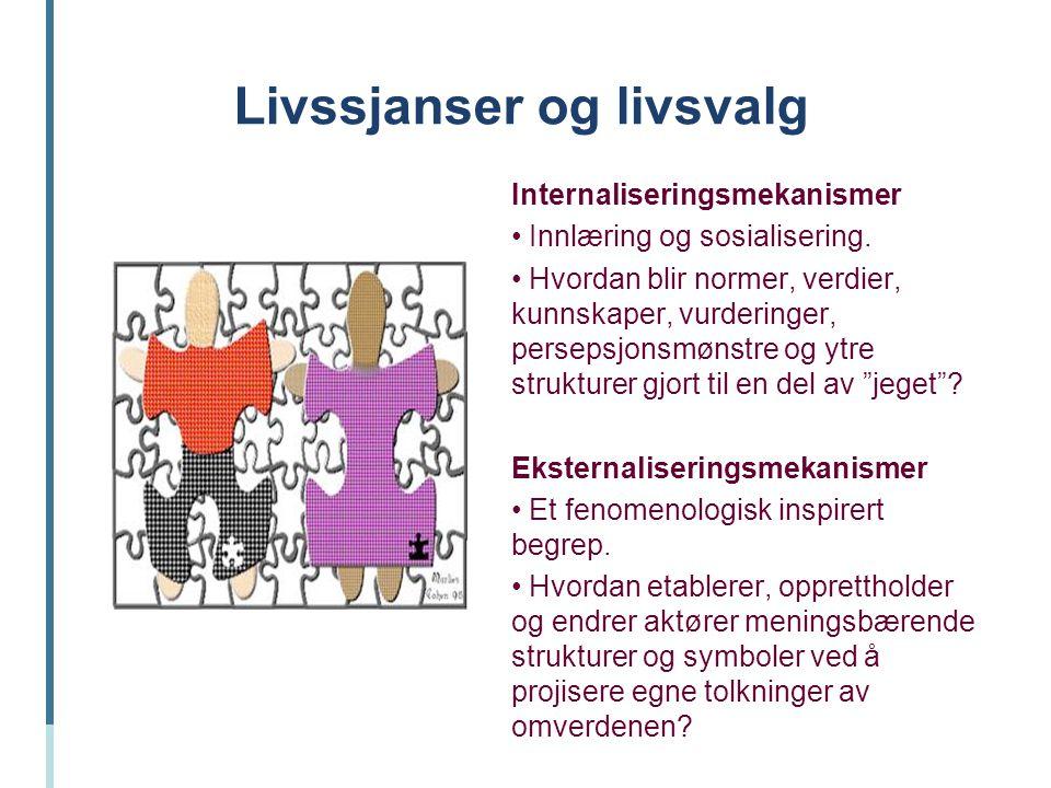 Livssjanser og livsvalg Internaliseringsmekanismer Innlæring og sosialisering. Hvordan blir normer, verdier, kunnskaper, vurderinger, persepsjonsmønst