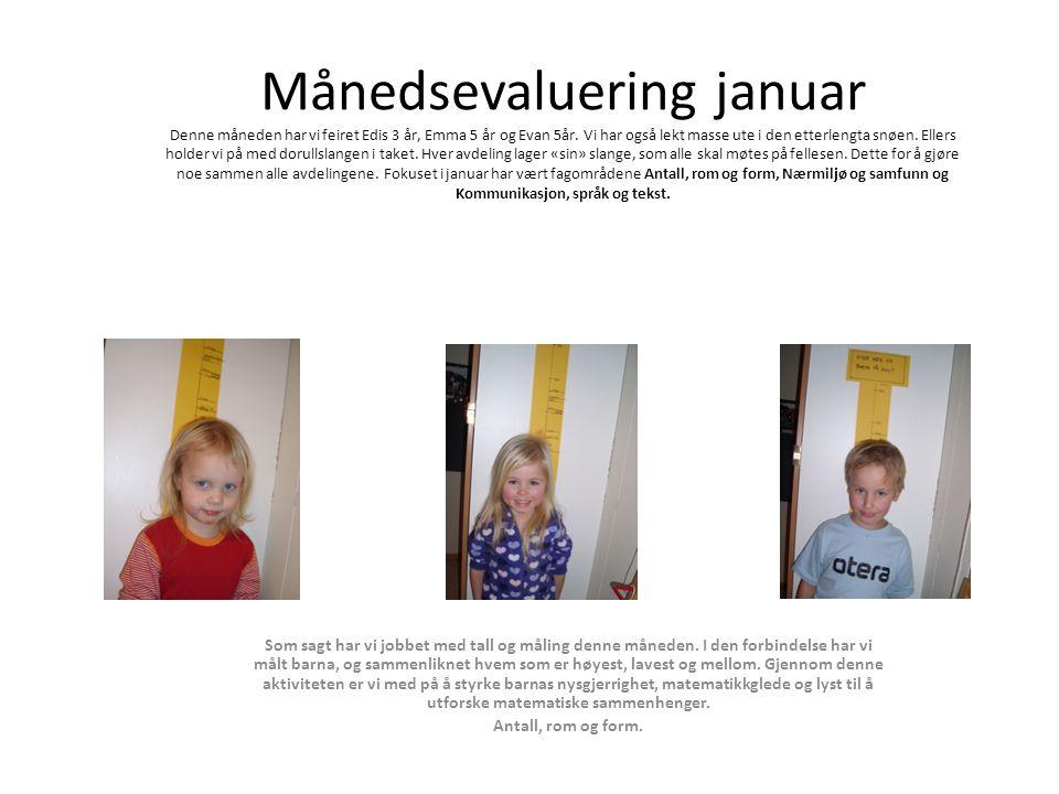 Månedsevaluering januar Denne måneden har vi feiret Edis 3 år, Emma 5 år og Evan 5år.