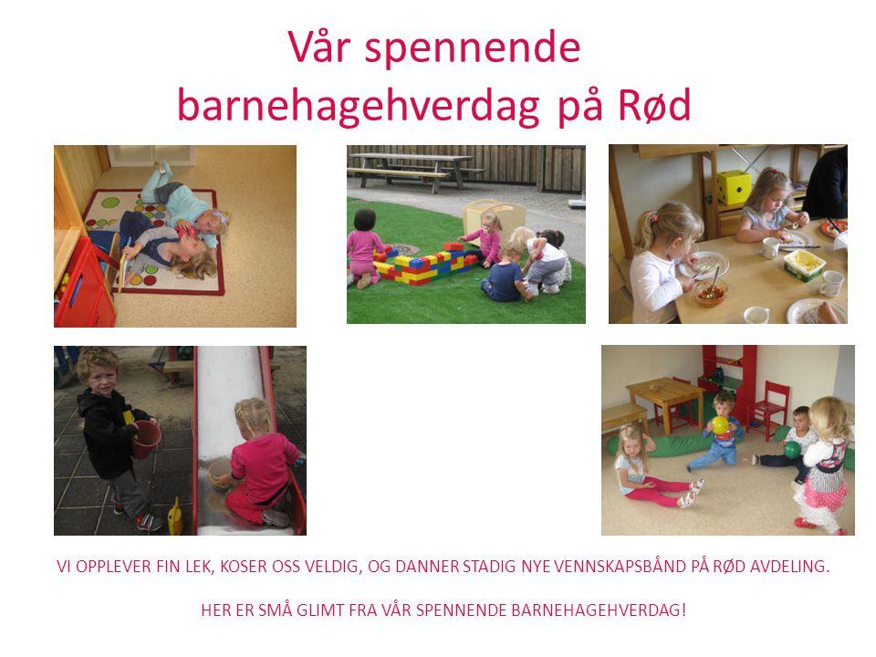 Vår spennende barnehagehverdag på Rød VI OPPLEVER FIN LEK, KOSER OSS VELDIG, OG DANNER STADIG NYE VENNSKAPSBÅND PÅ RØD AVDELING. HER ER SMÅ GLIMT FRA