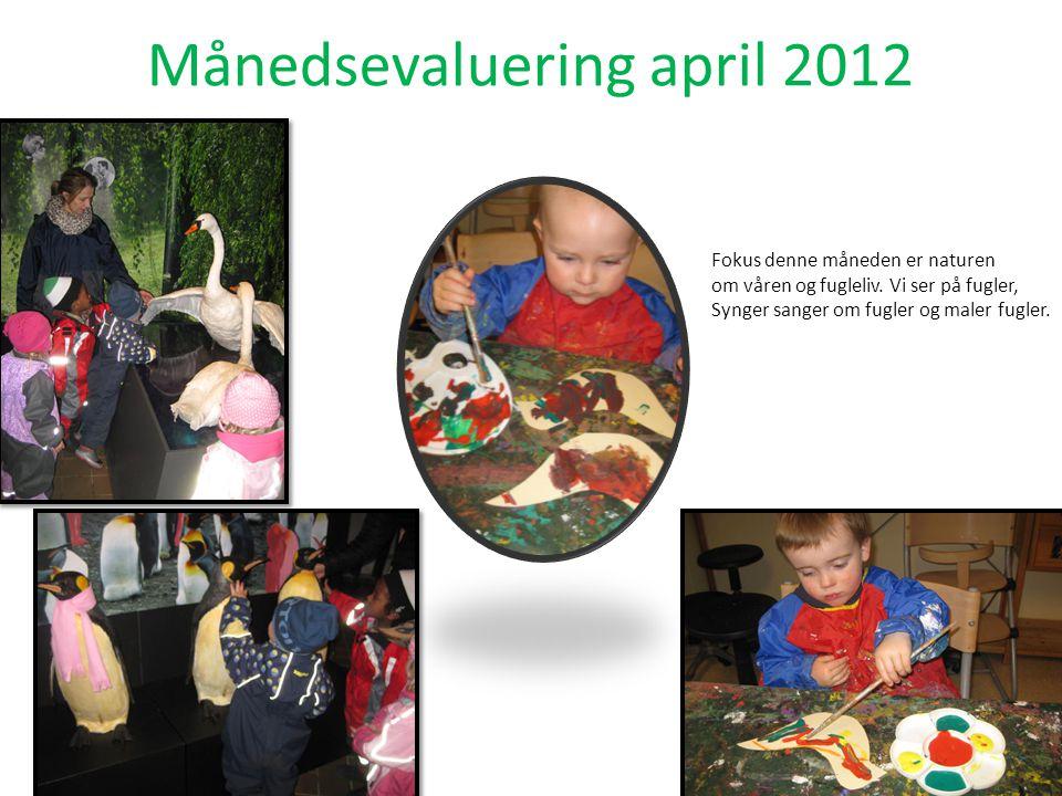 Månedsevaluering april 2012 Fokus denne måneden er naturen om våren og fugleliv.