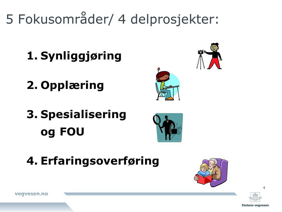 4 5 Fokusområder/ 4 delprosjekter: 1.Synliggjøring 2.Opplæring 3.Spesialisering og FOU 4.Erfaringsoverføring