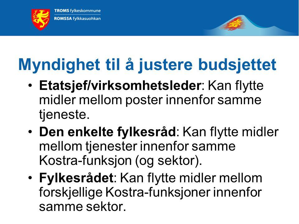 Myndighet til å justere budsjettet Etatsjef/virksomhetsleder: Kan flytte midler mellom poster innenfor samme tjeneste.