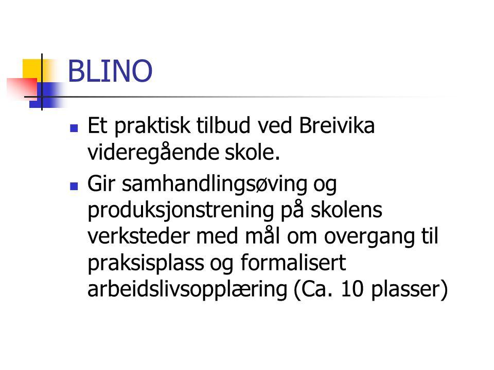 BLINO Et praktisk tilbud ved Breivika videregående skole. Gir samhandlingsøving og produksjonstrening på skolens verksteder med mål om overgang til pr