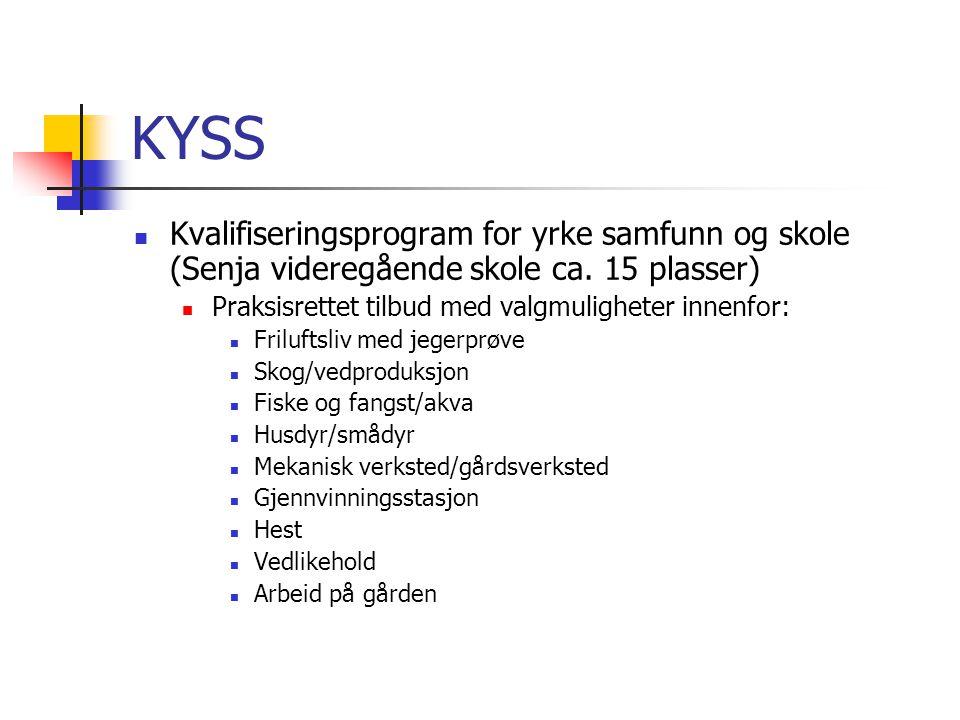 KYSS Kvalifiseringsprogram for yrke samfunn og skole (Senja videregående skole ca. 15 plasser) Praksisrettet tilbud med valgmuligheter innenfor: Frilu