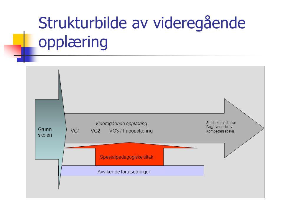 Strukturbilde av videregående opplæring VG1 VG2 VG3 / Fagopplæring Videregående opplæring Spesialpedagogiske tiltak Studiekompetanse Fag/svennebrev Ko