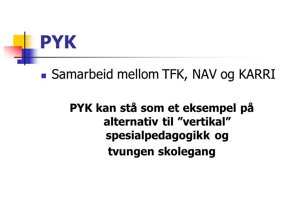 """PYK Samarbeid mellom TFK, NAV og KARRI PYK kan stå som et eksempel på alternativ til """"vertikal"""" spesialpedagogikk og tvungen skolegang"""