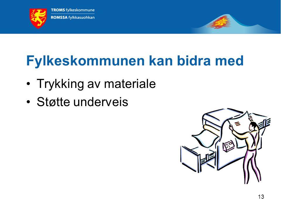 13 Fylkeskommunen kan bidra med Trykking av materiale Støtte underveis