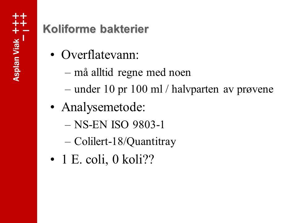Koliforme bakterier Overflatevann: –må alltid regne med noen –under 10 pr 100 ml / halvparten av prøvene Analysemetode: –NS-EN ISO 9803-1 –Colilert-18/Quantitray 1 E.