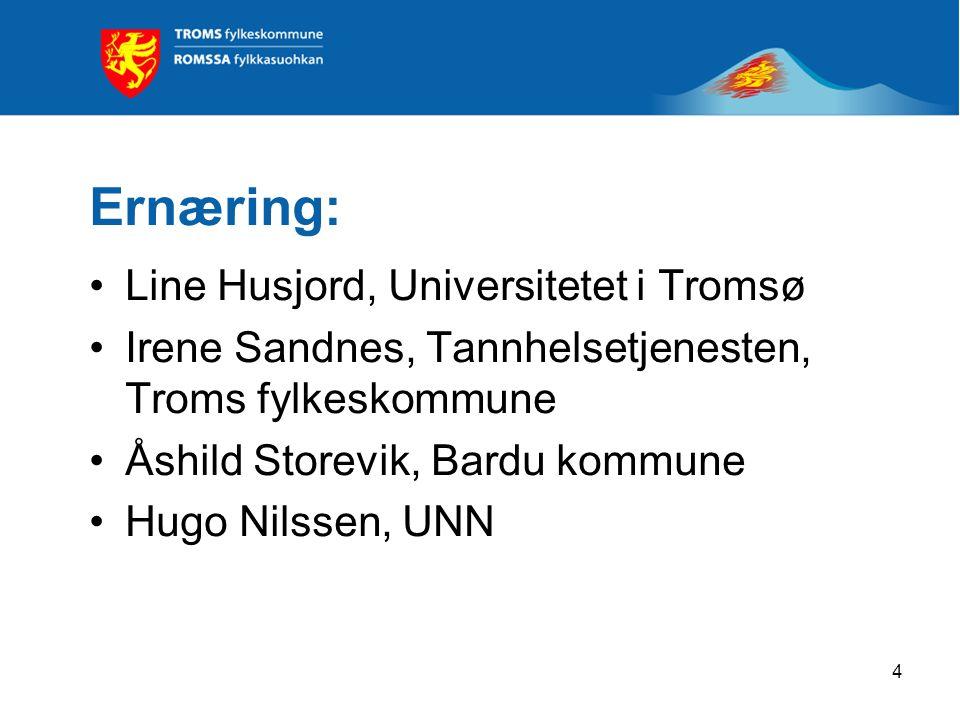 4 Ernæring: Line Husjord, Universitetet i Tromsø Irene Sandnes, Tannhelsetjenesten, Troms fylkeskommune Åshild Storevik, Bardu kommune Hugo Nilssen, UNN