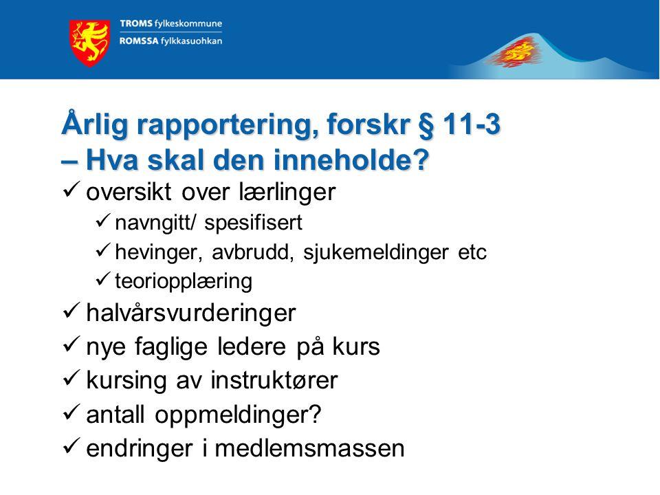 Årlig rapportering, forskr § 11-3 – Hva skal den inneholde.