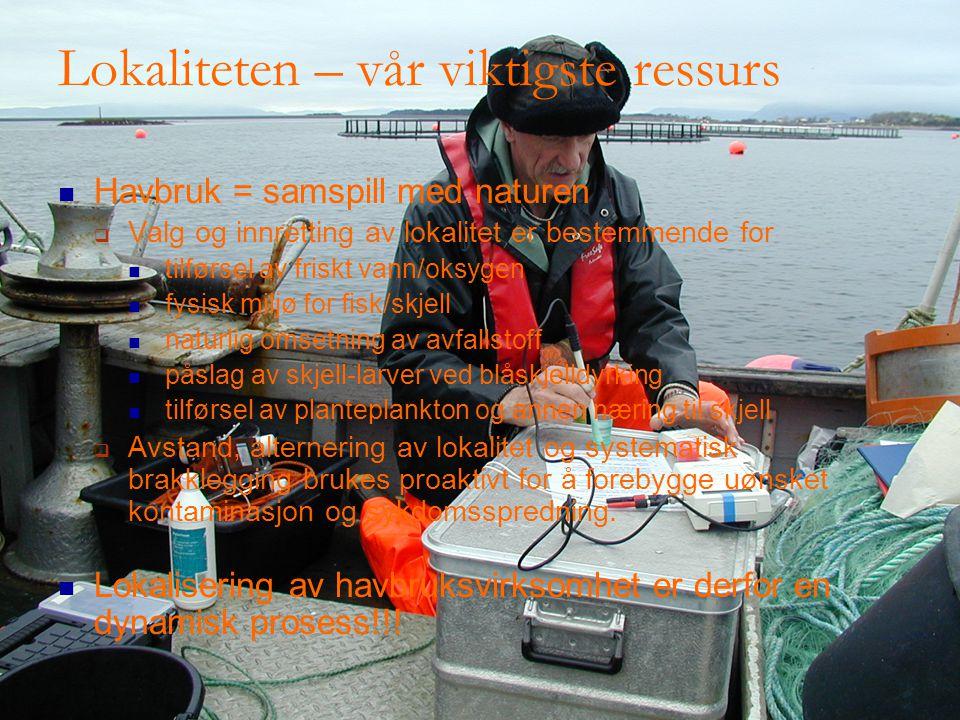 Lokaliteten – vår viktigste ressurs Havbruk = samspill med naturen  Valg og innretting av lokalitet er bestemmende for tilførsel av friskt vann/oksygen fysisk miljø for fisk/skjell naturlig omsetning av avfallstoff påslag av skjell-larver ved blåskjelldyrking tilførsel av planteplankton og annen næring til skjell  Avstand, alternering av lokalitet og systematisk brakklegging brukes proaktivt for å forebygge uønsket kontaminasjon og sykdomsspredning.