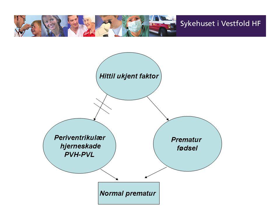 Hittil ukjent faktor Periventrikulær hjerneskade PVH-PVL Prematur fødsel Normal prematur