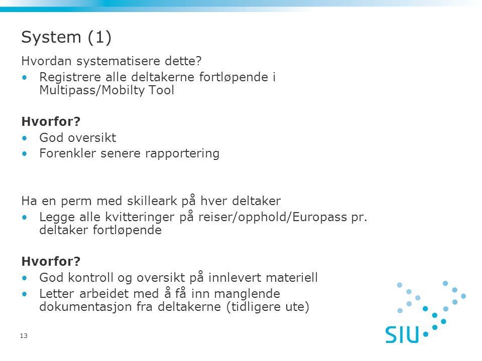 13 System (1) Hvordan systematisere dette.