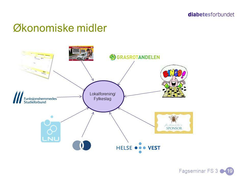 Økonomiske midler Fagseminar FS 319 Lokalforening/ Fylkeslag