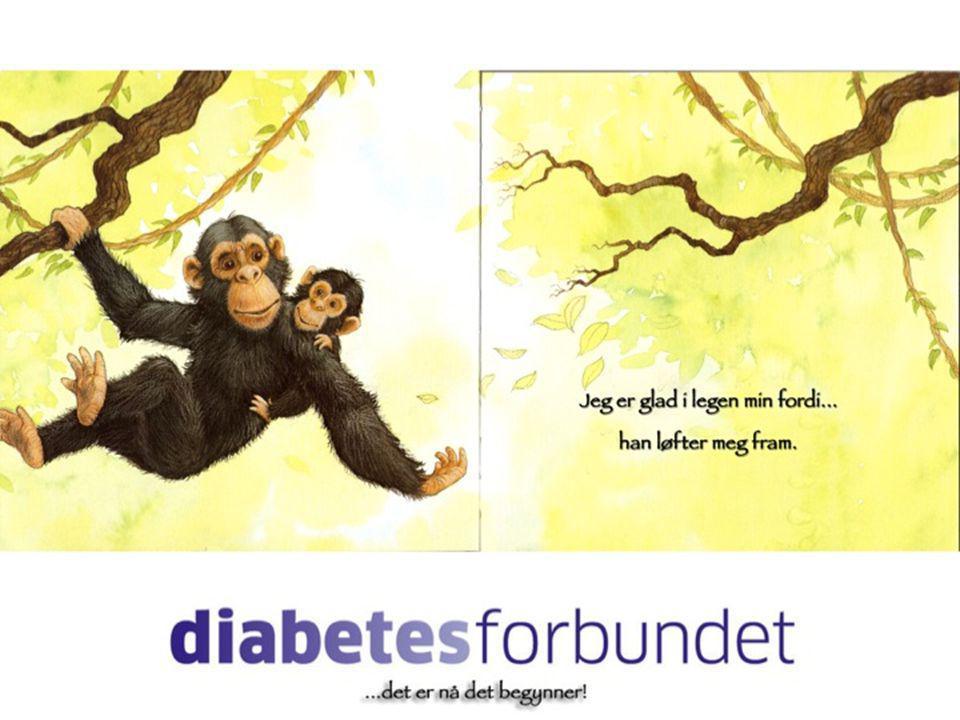 9,86 Diabeteskonferansen 201024