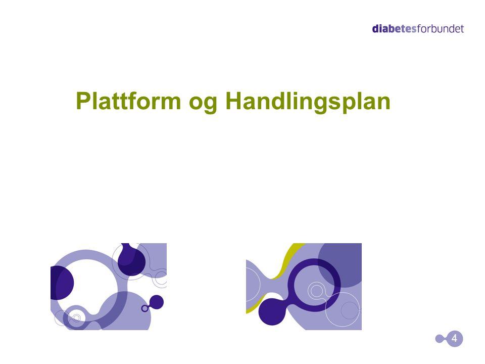 Plattform og Handlingsplan 4