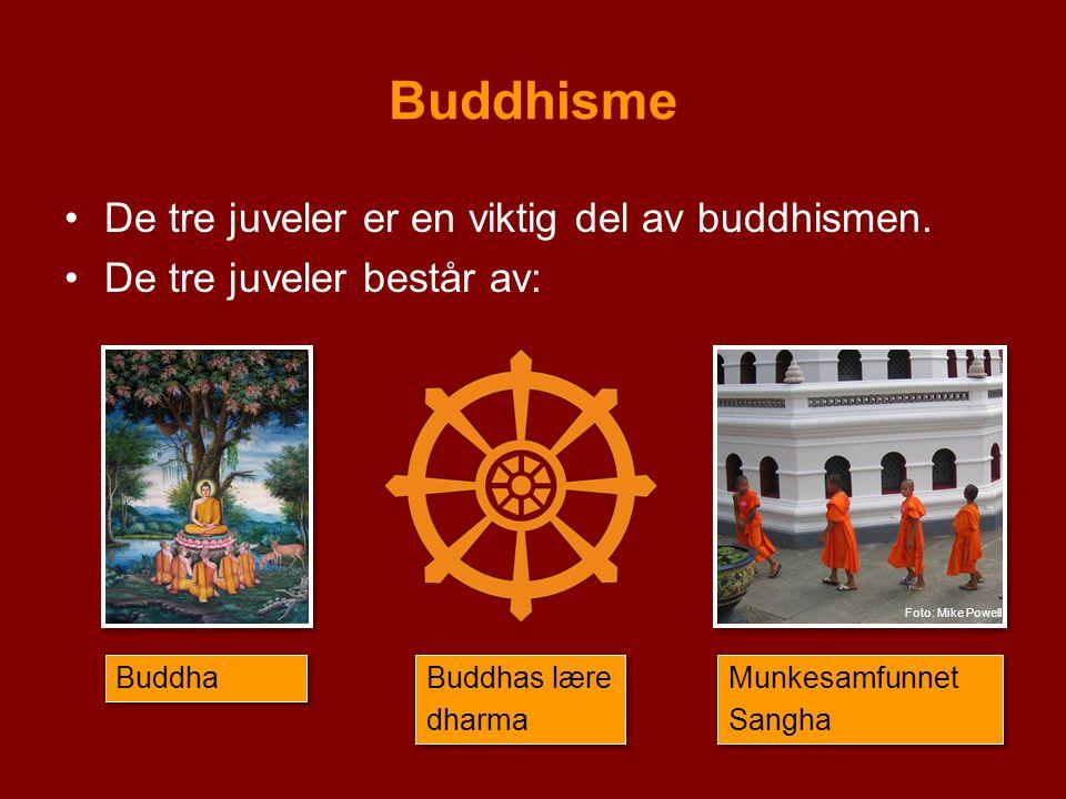 Buddhisme De tre juveler er en viktig del av buddhismen. De tre juveler består av: Buddha Buddhas lære dharma Buddhas lære dharma Munkesamfunnet Sangh