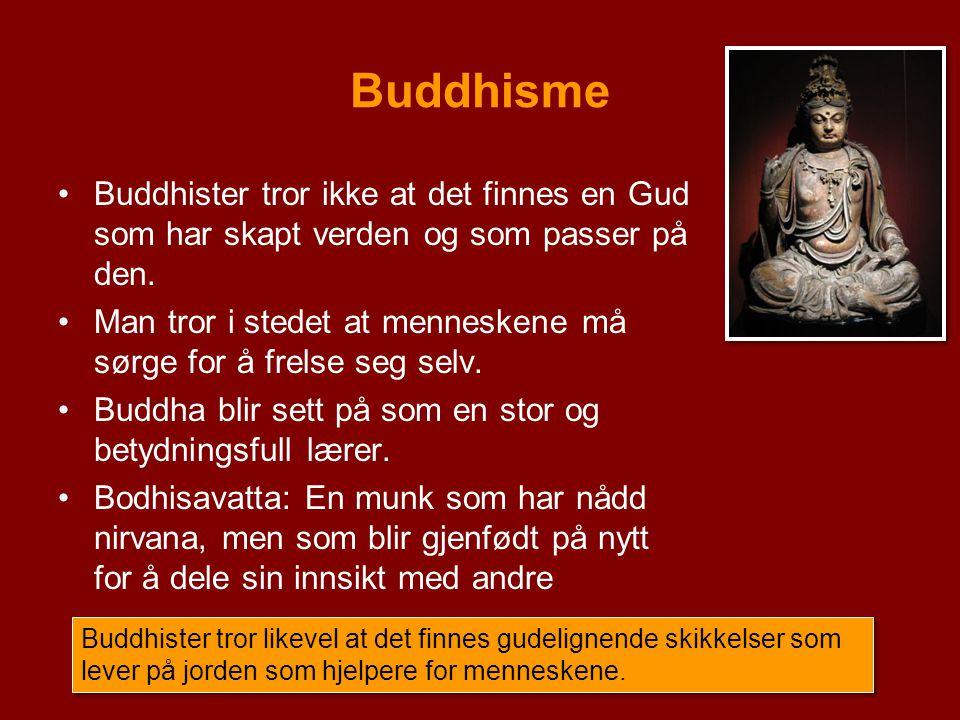 Buddhisme Buddhister tror ikke at det finnes en Gud som har skapt verden og som passer på den. Man tror i stedet at menneskene må sørge for å frelse s