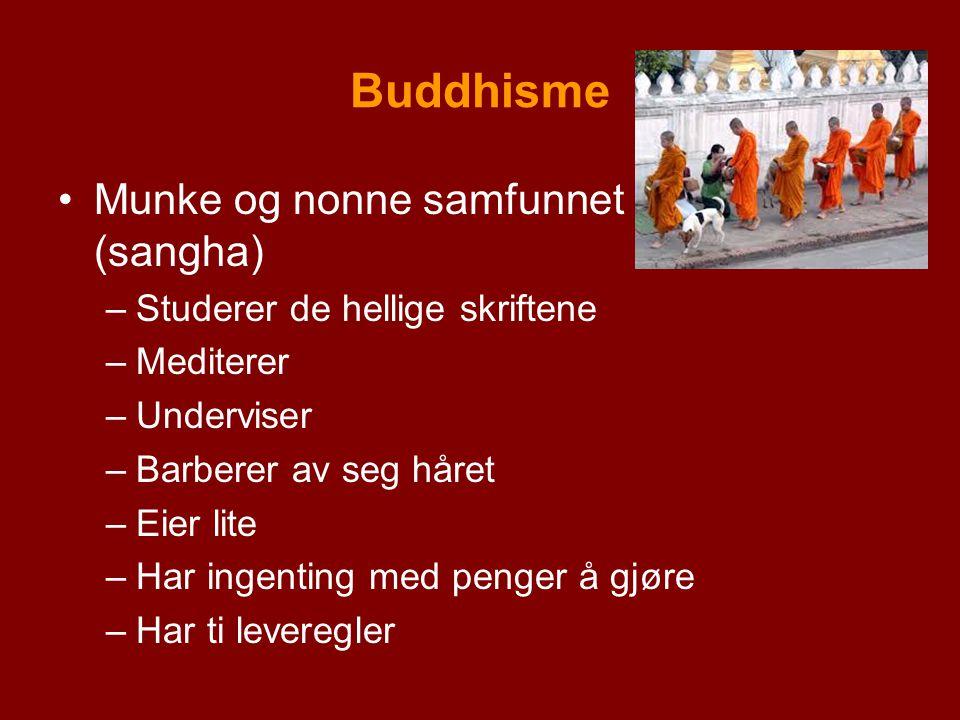 Buddhisme Munke og nonne samfunnet (sangha) –Studerer de hellige skriftene –Mediterer –Underviser –Barberer av seg håret –Eier lite –Har ingenting med