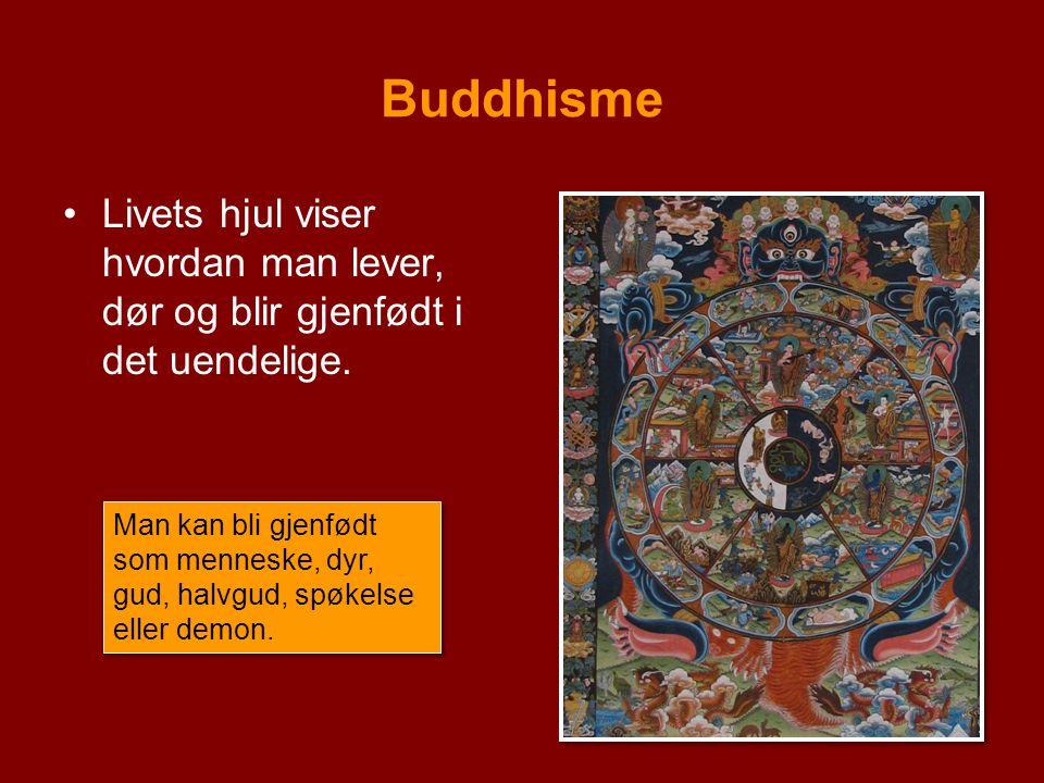 Buddhisme Livets hjul viser hvordan man lever, dør og blir gjenfødt i det uendelige. Man kan bli gjenfødt som menneske, dyr, gud, halvgud, spøkelse el