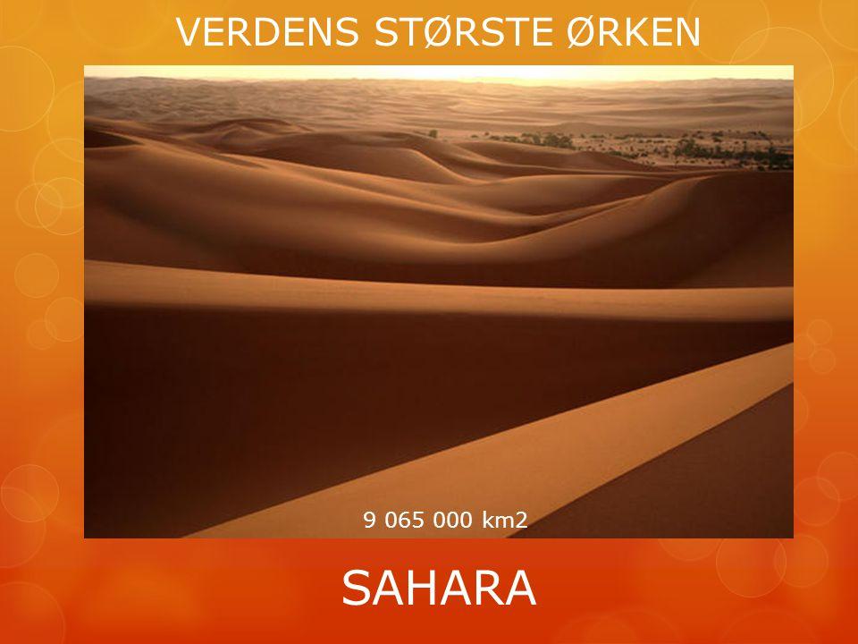 VERDENS STØRSTE ØRKEN SAHARA 9 065 000 km2