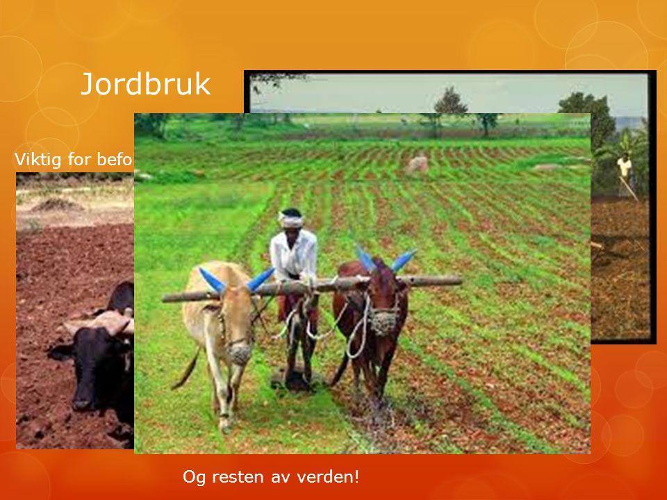 Jordbruk Viktig for befolkningen Og resten av verden!