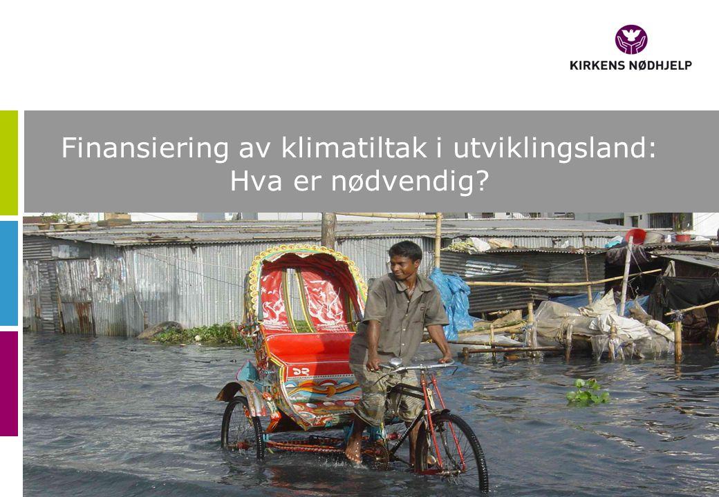 Finansiering av klimatiltak i utviklingsland: Hva er nødvendig?